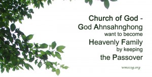 church of God Passover
